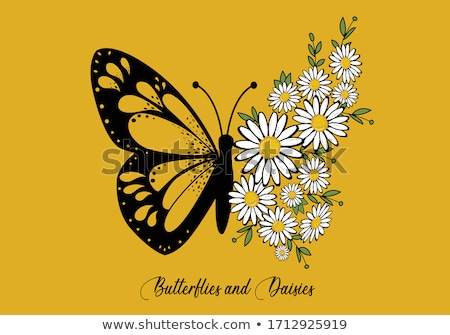 floral butterfly stock photo © get4net