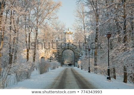 冬 日 公園 ストックフォト © SergeyAndreevich