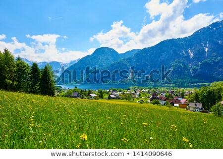 houses with Alp Panorama in Bad Goisern Stock photo © meinzahn