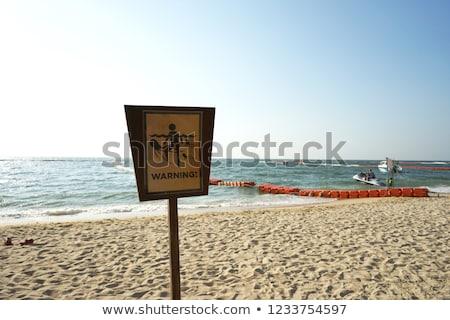 Figyelem meduza illusztráció nő tengerpart nap Stock fotó © adrenalina