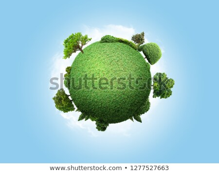 world globe in the forest Stock photo © nito