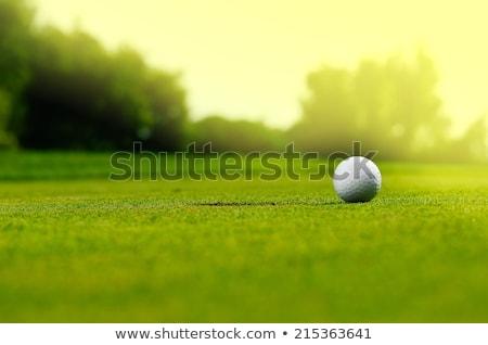 golf ball on grass stock photo © make
