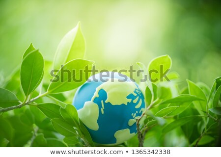 Earth Day. Globe planet in space. Lettering text for greeting card Stock photo © orensila
