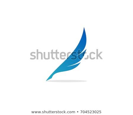 Feather pen Logo Vector Stock photo © Ggs