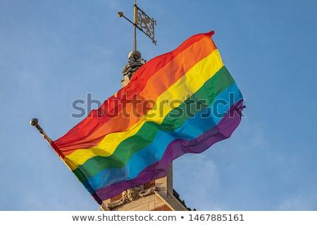 Közelkép szivárvány homoszexuális büszkeség zászló integet Stock fotó © dolgachov
