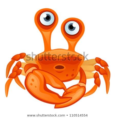 Comico spiaggia granchio punta colorato cartoon Foto d'archivio © derocz