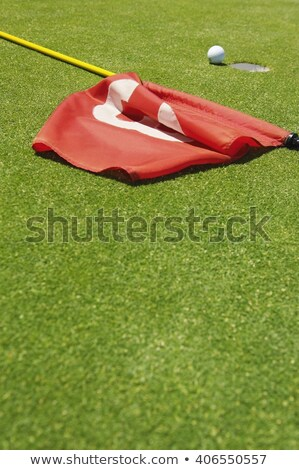 golf ball near hole with flag and number stock photo © hofmeester