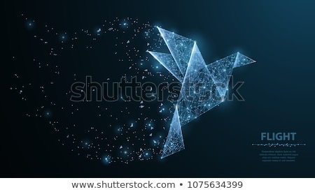 wireframe poligonal abstract mesh vector background Stock photo © SArts