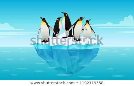 вектора стиль иллюстрация ледник открытых морем Сток-фото © curiosity
