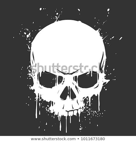 Imagem crânio terrível isolado branco linha Foto stock © frescomovie