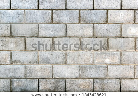Full Frame Orange Cinderblock Wall Stock photo © Qingwa