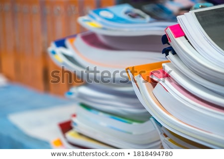 file folder labeled as summary reports stock photo © tashatuvango
