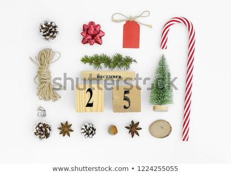 Kunst · Weihnachten · Feiertage · Dekoration · Tanne · Niederlassungen - stock foto © vlad_star