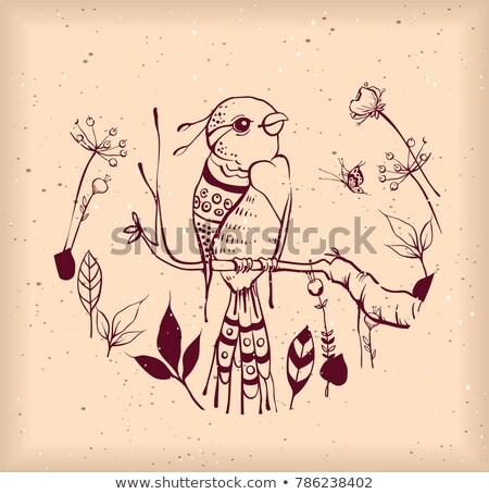 鳥 楽園 支店 花 果物 抽象的な ストックフォト © orensila