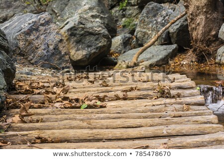 Old wooden bridge from logs in the gorge of Richtis at winter, Crete Stock photo © ankarb