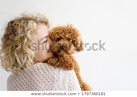 Holding toy poodle dog in arms Stock photo © raywoo