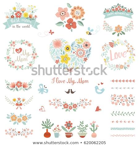 Boldog anya nap aranyos kaktusz virág Stock fotó © cienpies