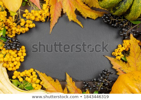 Autumn foliage with a pumpkin and a chalkboard - Happy Halloween Stock photo © Zerbor