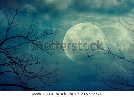 halloween card with full moon and tree stock photo © artspace