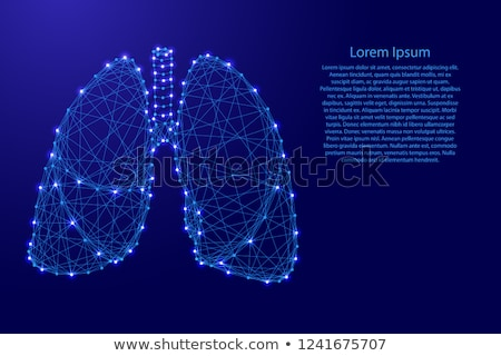 Human Lungs Banner Isolated on Blue. Vector Icon Stock photo © robuart