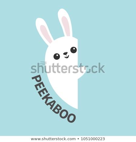karikatür · örnek · küçük · tavşan · çocuk · tavşan - stok fotoğraf © cthoman