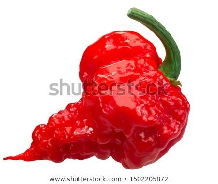 Carolina reaper chile pepper, whole pod Stock photo © maxsol7