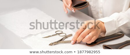 manicurist and client manicure procedure tool set stock photo © robuart