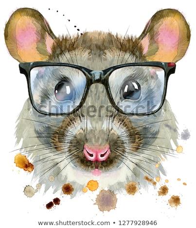 Watercolor portrait of rat with big black glasses Stock photo © Natalia_1947