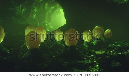 Jelenet barlang éjszakai jelenet éjszaka illusztráció fa Stock fotó © colematt