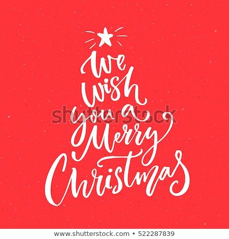 веселый · Рождества · типографики · почерк · снежинка · вектора - Сток-фото © robuart