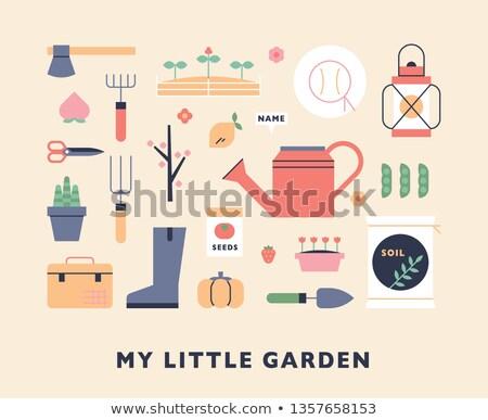 vektor · szett · locsolókanna · növény · kosz · rajz - stock fotó © olllikeballoon