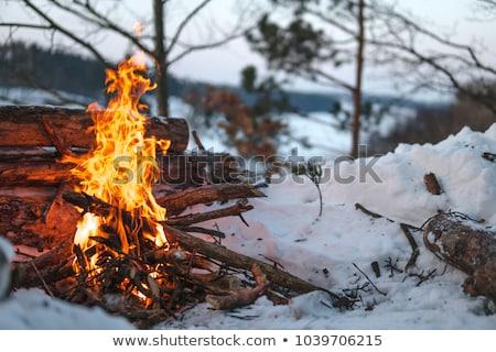 Stock fotó: Kék · sátor · tábortűz · fehér · illusztráció · fa