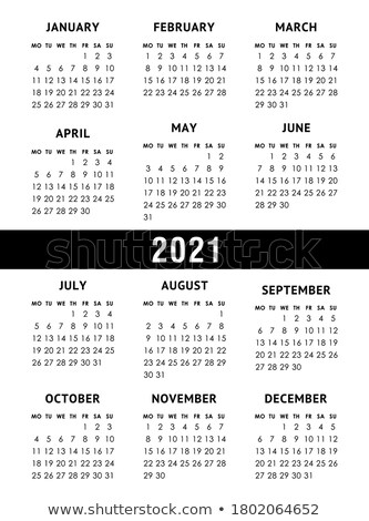 pocket calendar 2021 grid template isolated on white stock photo © orensila
