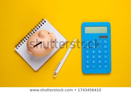Persely számológép közelkép kicsi rózsaszín pénz Stock fotó © AndreyPopov