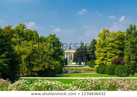 Park milaan Italië detail water boom Stockfoto © boggy