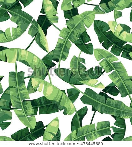 Vector seamless pattern in green and white with trees, forest background for summer holiday textile  Stock photo © Pravokrugulnik