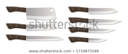 Kés fémes szakács konyhai felszerelés eszköz vektor Stock fotó © pikepicture