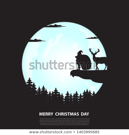 Santa Claus Standing in Winter Forest at Night Stock photo © robuart