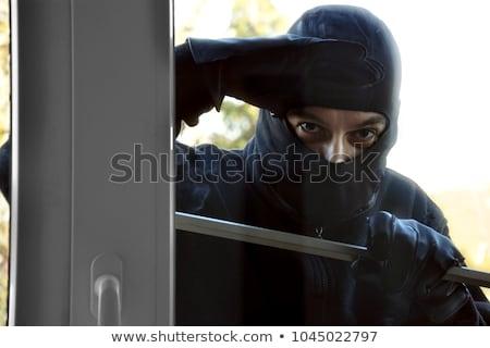 Ladrón mirando casa ventana Windows Foto stock © AndreyPopov