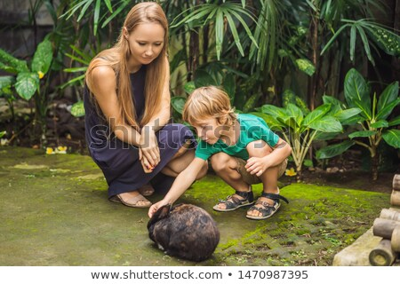 Mother and son feeds the rabbit. Cosmetics test on rabbit animal. Cruelty free and stop animal abuse Stock photo © galitskaya