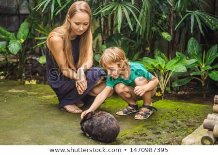 матери сын кролик косметики испытание животного Сток-фото © galitskaya