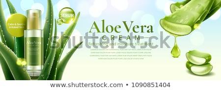 Aloe cura della pelle gel crema spa Foto d'archivio © marilyna