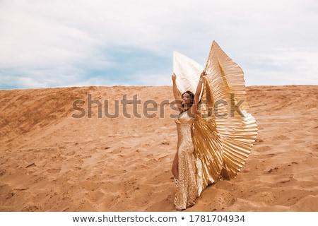 Árabe · dançarina · deserto · asas · pose · dançar - foto stock © fxegs