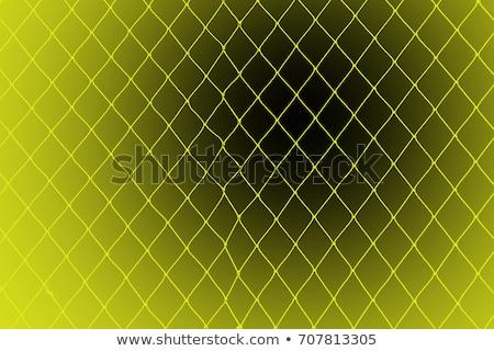 女性 閉じ込められた 黒 魚網 魅力のある女性 顔 ストックフォト © adamr