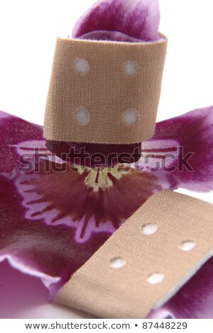 violet orchid flower and adhesive tape Stock photo © prill