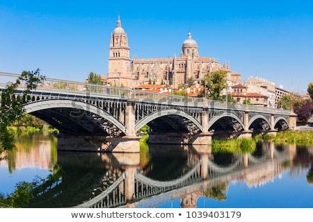 Een veel daken kerk architectuur stijl Stockfoto © ribeiroantonio