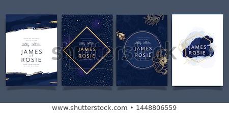 Elegante ontwerp abstract schoonheid kleur golven Stockfoto © Designus