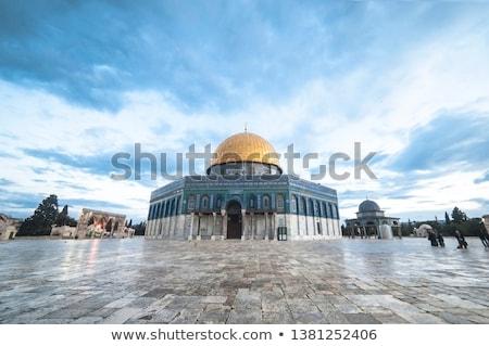 Istanbul domes Stock photo © Mikko