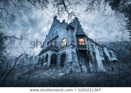 Abbandonato casa chiaro di luna vecchio up Foto d'archivio © AlienCat