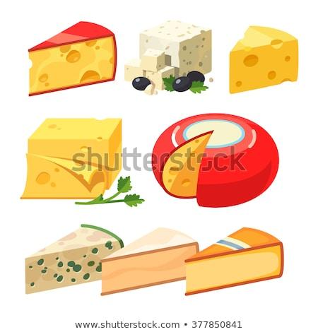 сыра иллюстрация вектора xxl продовольствие обеда Сток-фото © UPimages